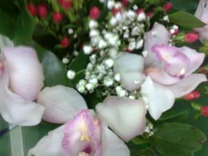 цветы3 008